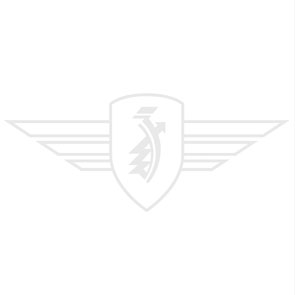 World Record Badge Speldje 40 Mm
