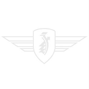Condensator Model Bosch Klein (Soldeer)